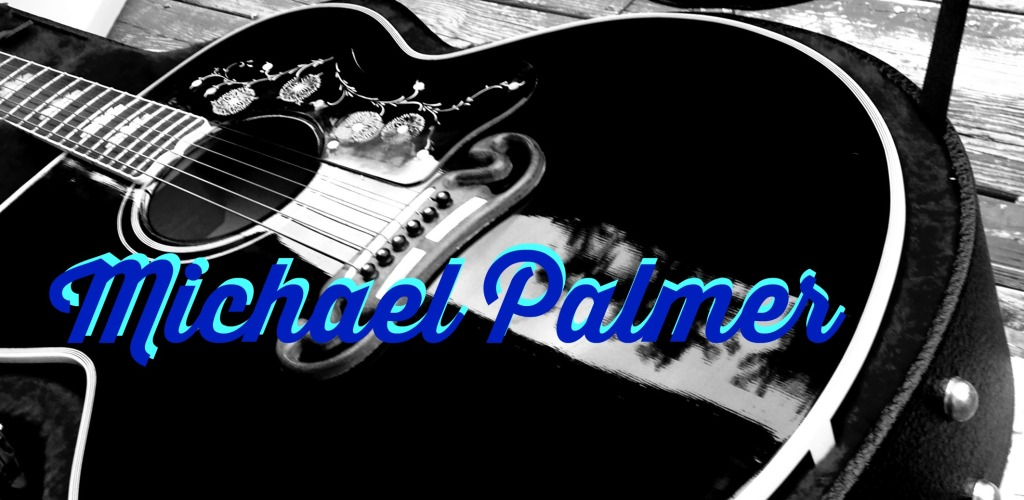 Mchael Palmer Martinsburg Guitarist